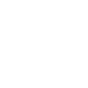 logo-santostefano-bianco